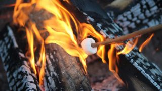 Best Fire Starters for Camping